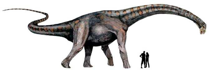 Distinguen Un Nuevo Clado De Dinosaurios Gigantes Noticias De La Ciencia Y La Tecnologia Amazings Ncyt Después de 205 millones de años de espera para hallar sus restos y bautizado como ingentia prima, este dinosaurio de ocho metros de largo y diez toneladas de peso representa el poder de las hembras. nuevo clado de dinosaurios gigantes