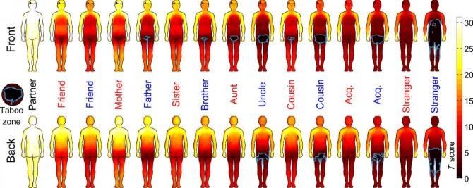 Mapa corporal muy común del contacto físico social — Noticias de la ...