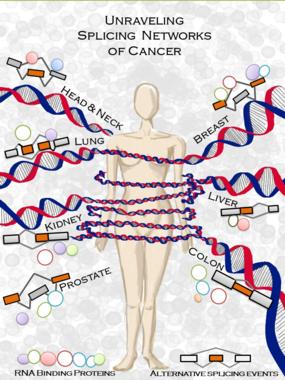 Lucha contra el cáncer - Página 3 Img_35485